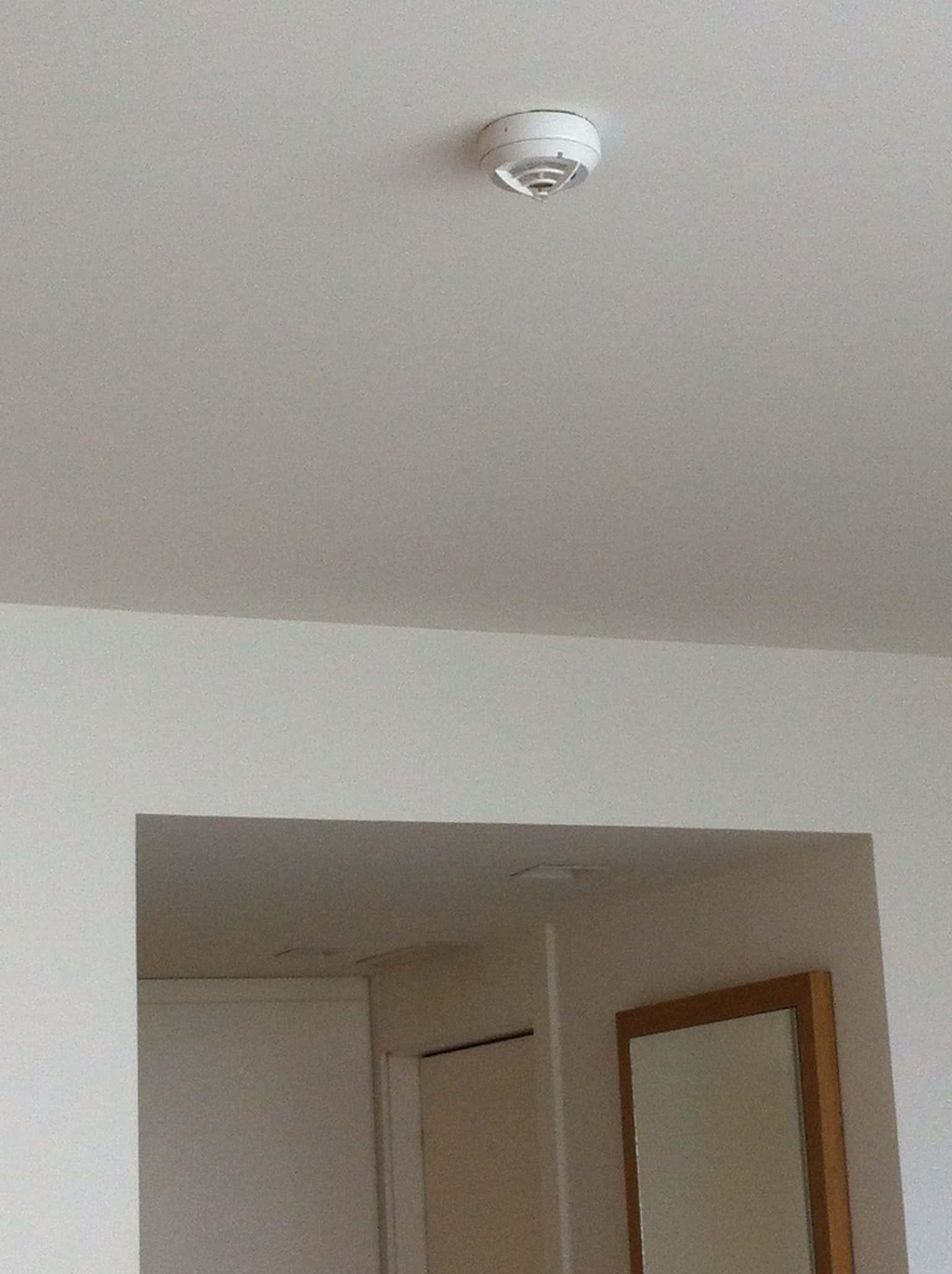 Chapuzas en habitaciones de hoteles en las instalaciones - Detectores de humo ...